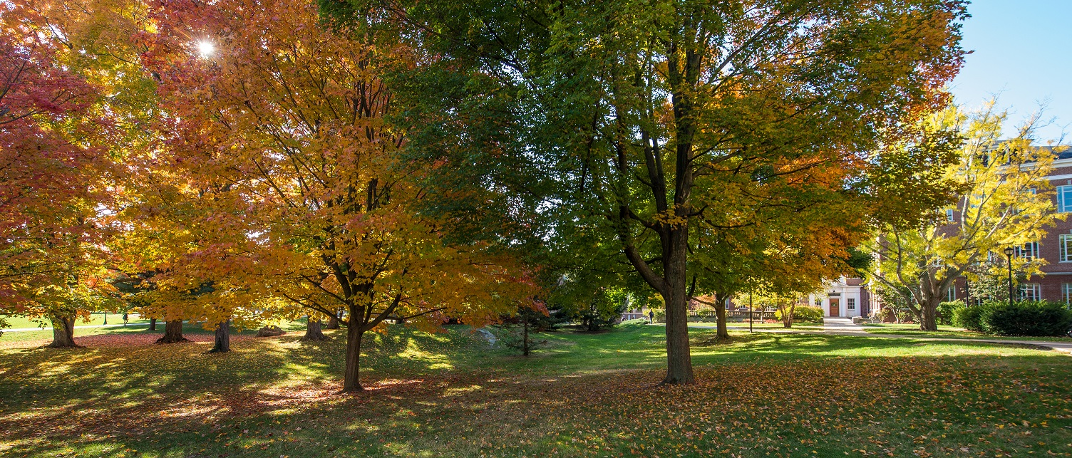 Image of fall foliage on UNH campus