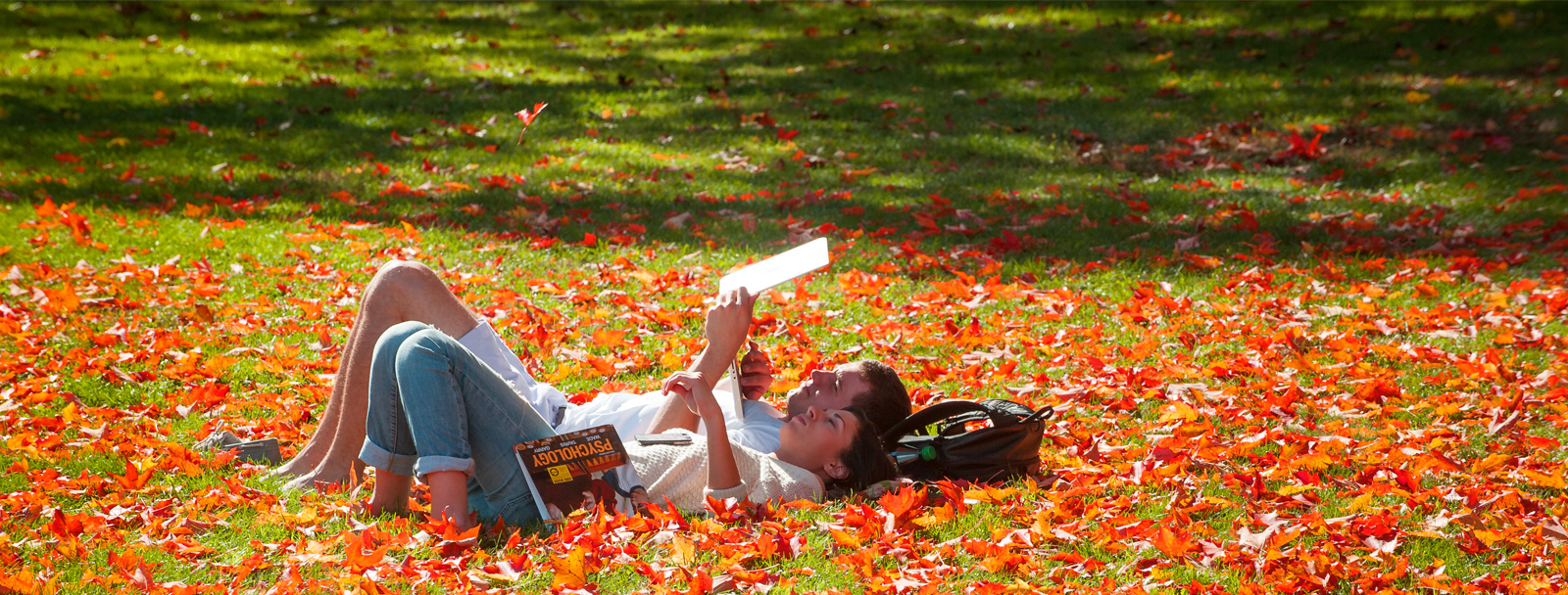 UNH students in the fall