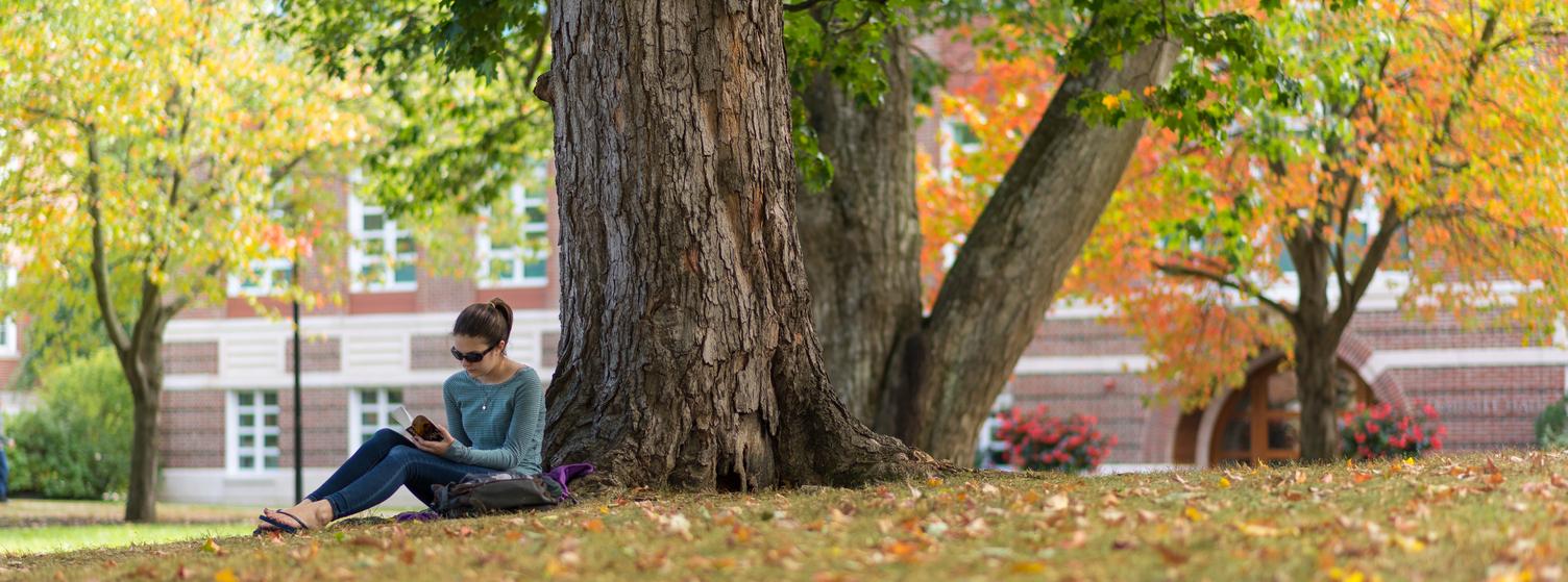Image of student sitting under tree