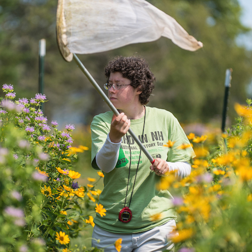 Undergraduate student in a field of flowers with a bee net