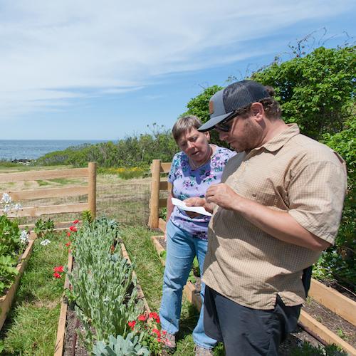Two volunteers help plant Celia Thaxter's garden on Appledore Island