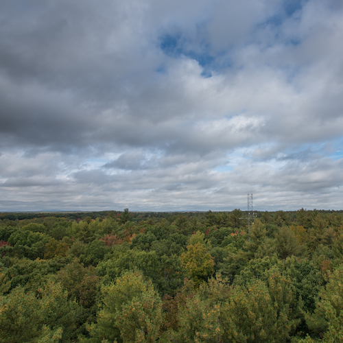 Forest, research tower, dramatic clouds from above