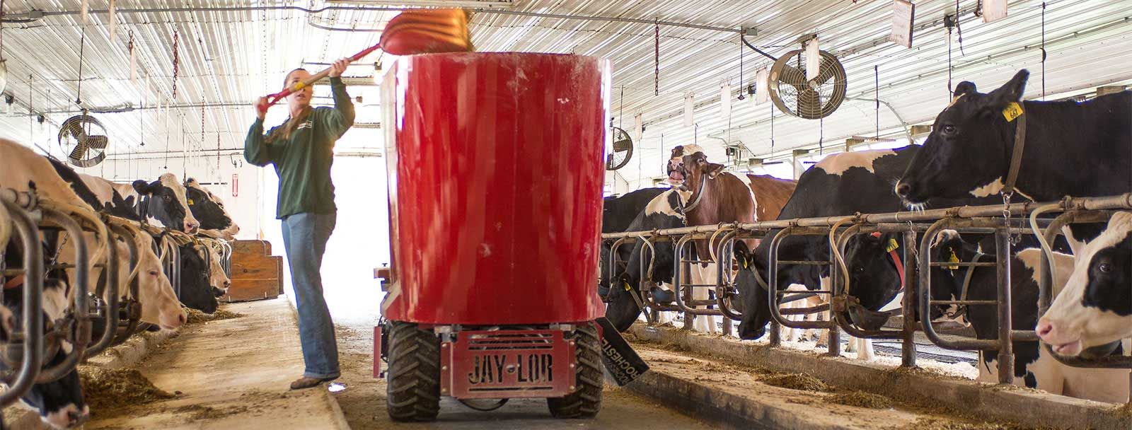 The Fairchild Dairy Teaching and Research Center at UNH turns 25 on Wednesday, Oct. 29, 2014