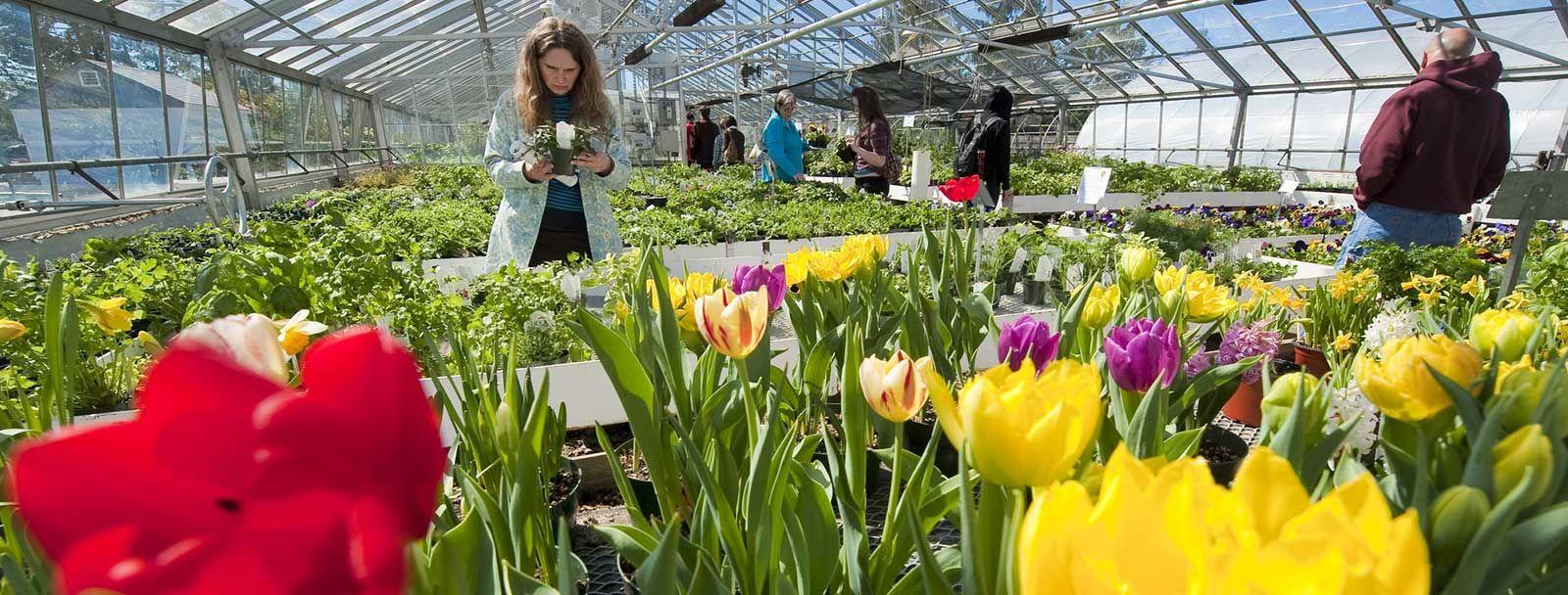 UNH Macfarlane Research Greenhouses