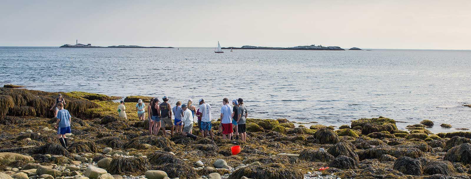 Shoals Marine Lab off coast of New Hampshire