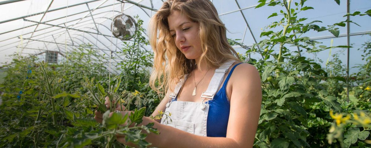 Female student with plants in greenhouse