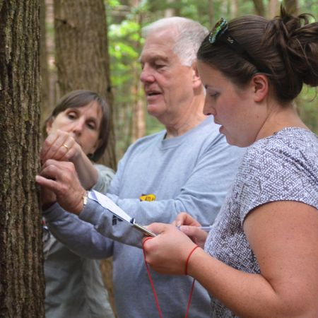 Two women taking notes while an older gentleman inspects a tree