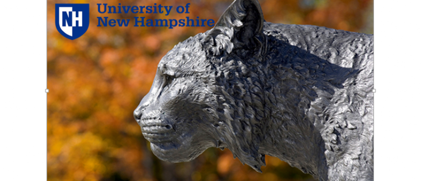 Welcome to UNH DSS, Wildcats!