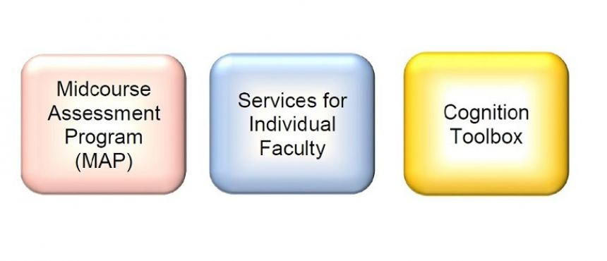 MAPs, Services for Individual Faculty, and Cognition Toolbox