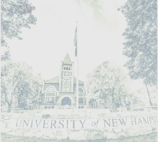 unh connect giving image