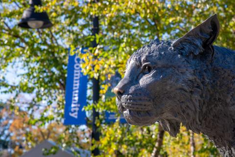 Wildcat statue on UNH Campus