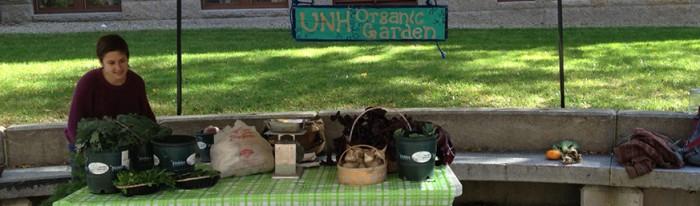 Organic Gardening at UNH