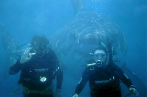 UNH's Coolest Courses [part 4]: Scuba Diving