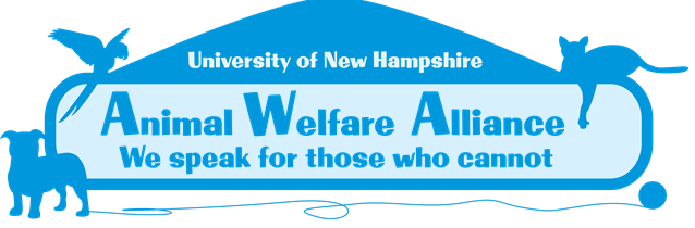 Getting Warm and Fuzzy with UNH's Animal Welfare Alliance