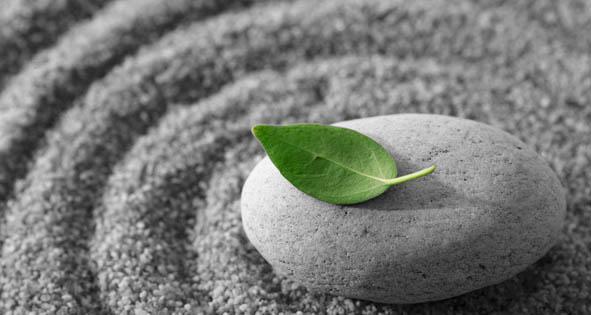 My Meditation Experience at UNH