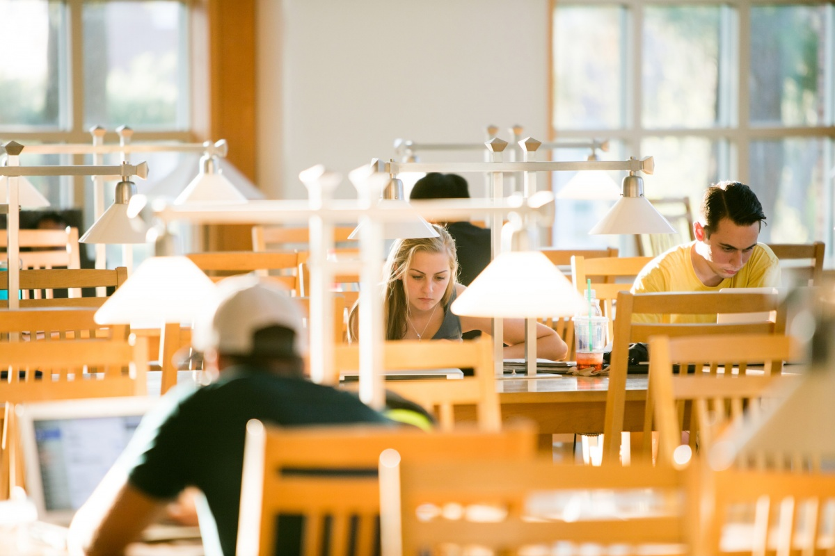Students studying in Dimond Library at UNH