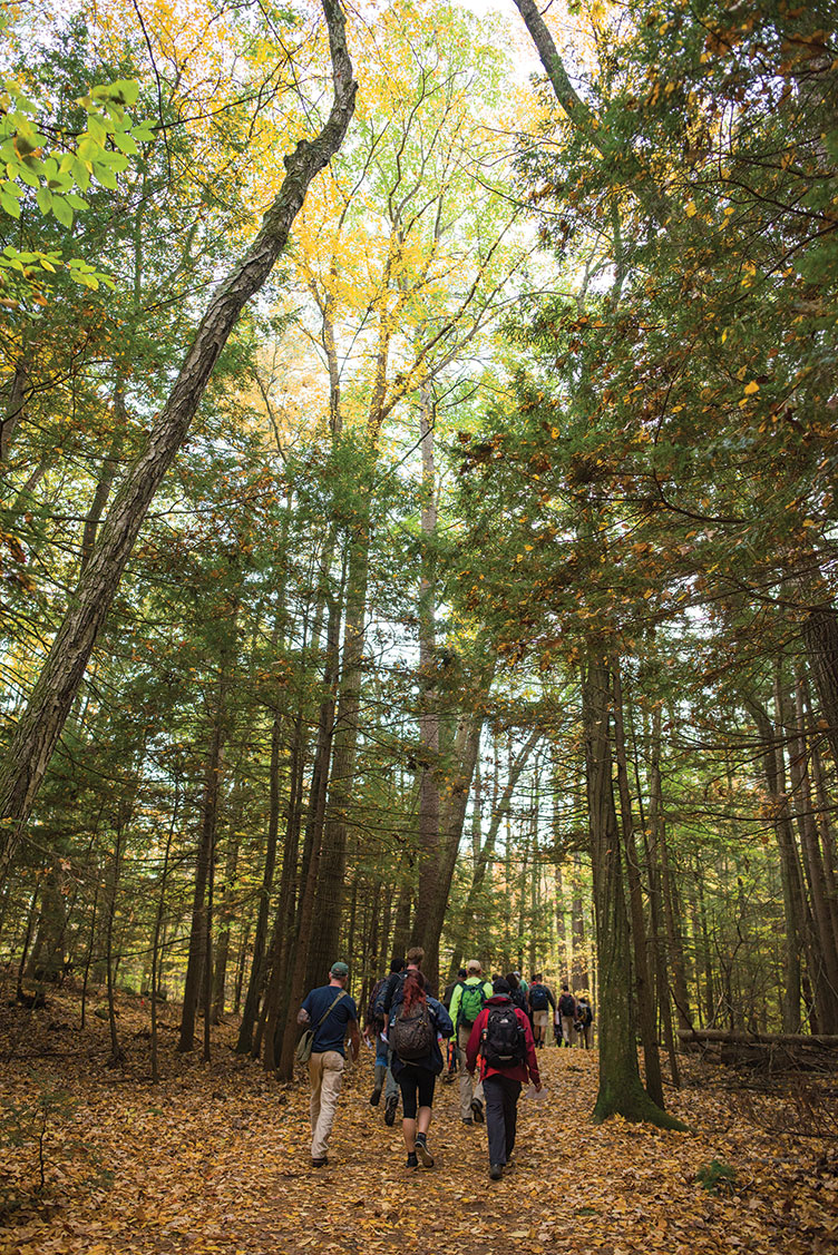 UNH students walking in College Woods