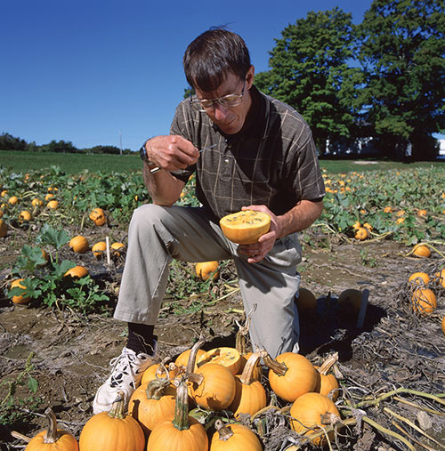 Brent Loy in a pumpkin patch