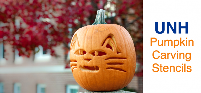 UNH pumpkin carving stencils graphic
