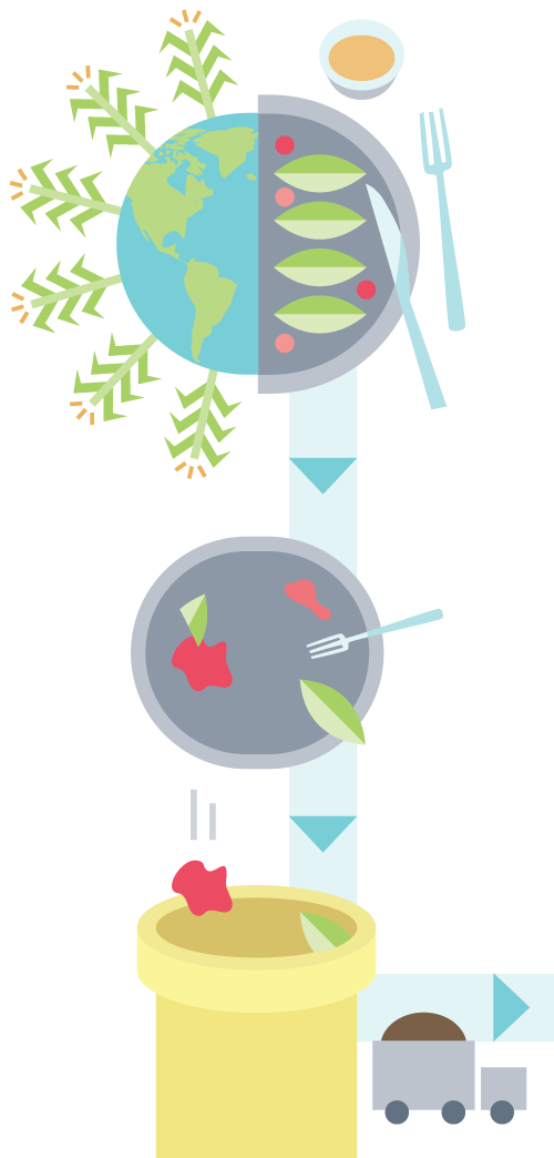 illustration of food being grown, eaten and falling into a compost bucket