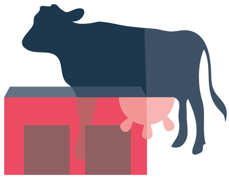 illustration of a cow and barn