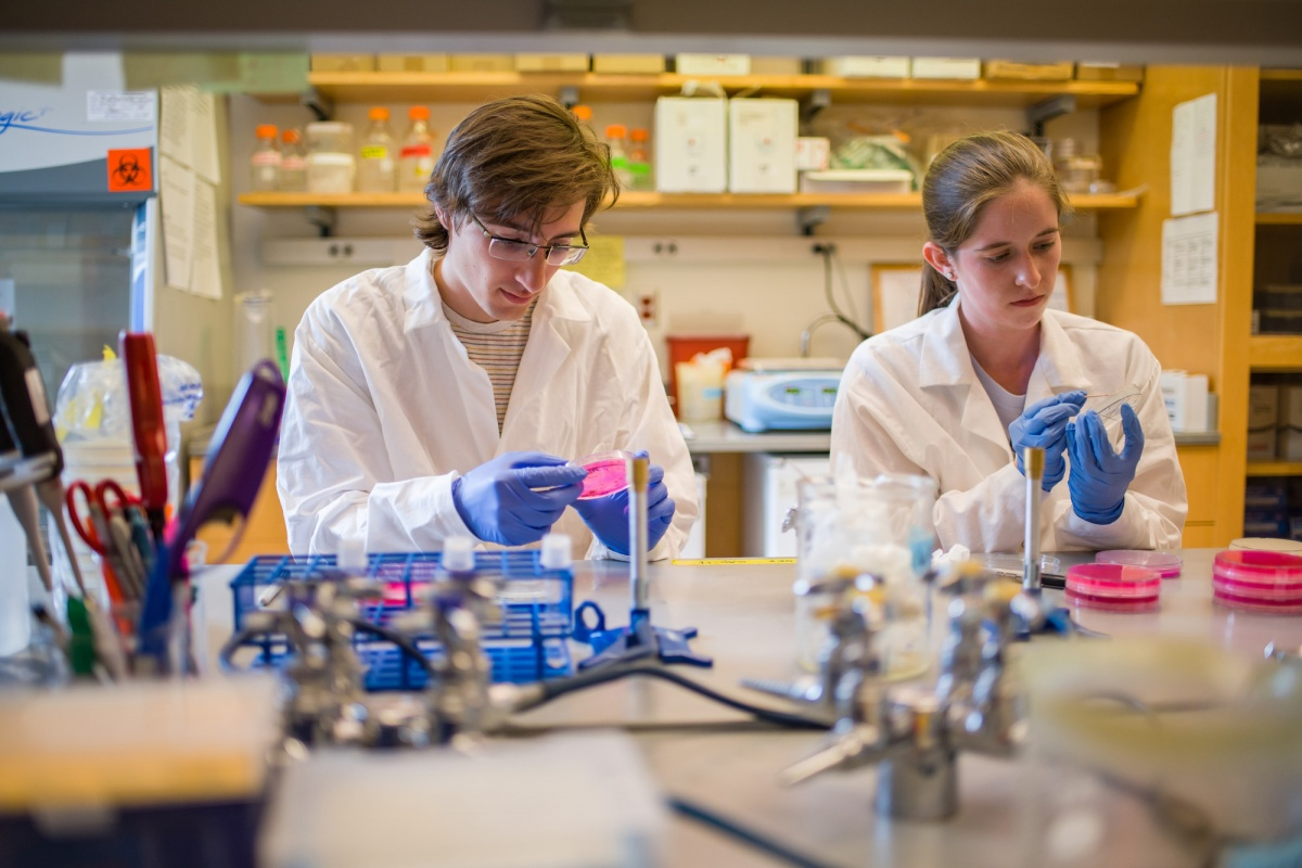 UNH students in a lab