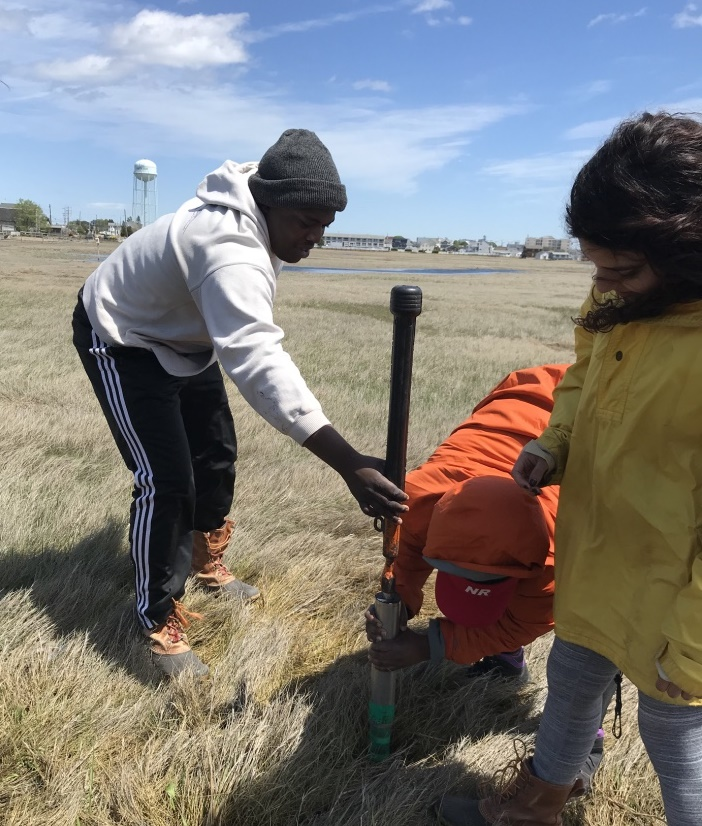 Students collect sediment core in salt marsh.