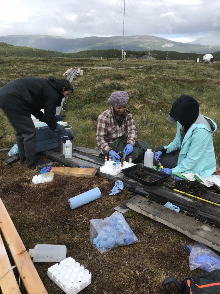 Three graduate students collect data in Arctic permafrost.