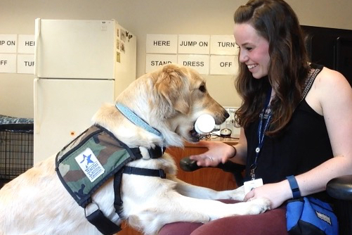 UNH alumna Jennifer Blessing 'works with a service dog in training