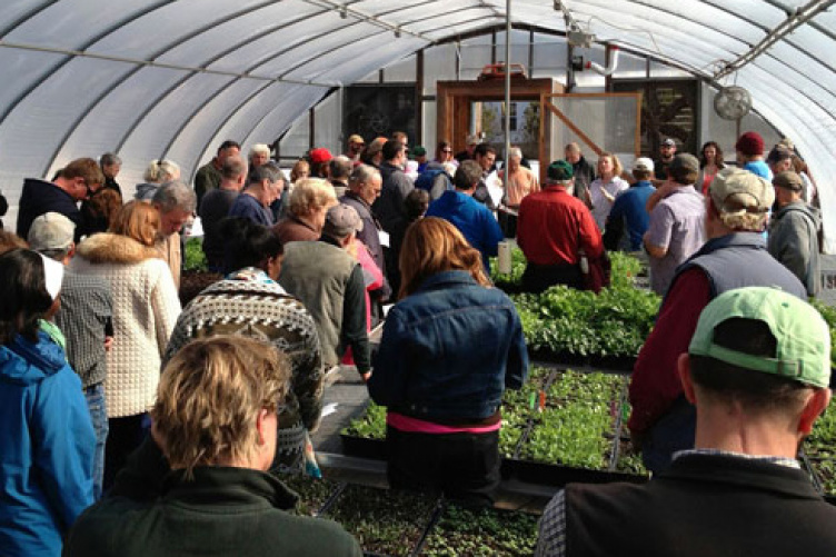 local farmers in UNH winter greenhouse with lettuce