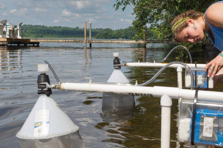 cyanobacteria research on NH lake