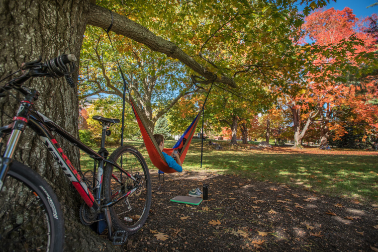 UNH student on campus fall 2016