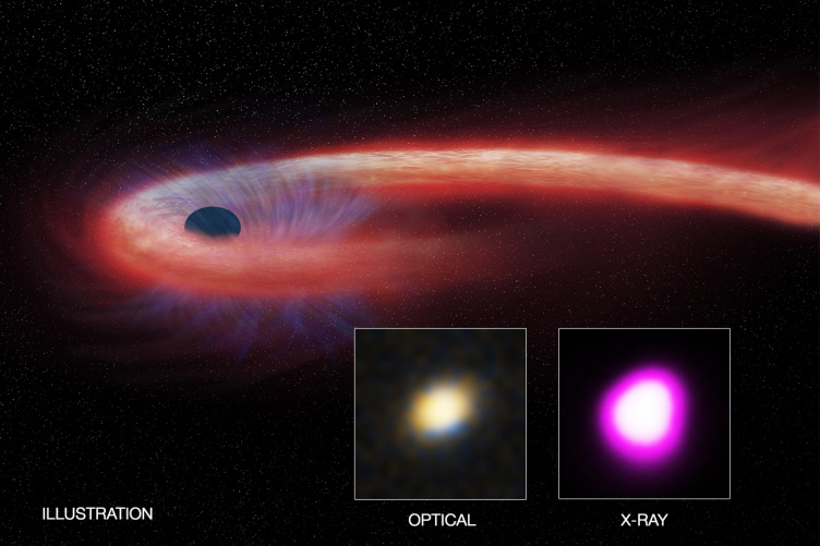a black hole eating a dying star