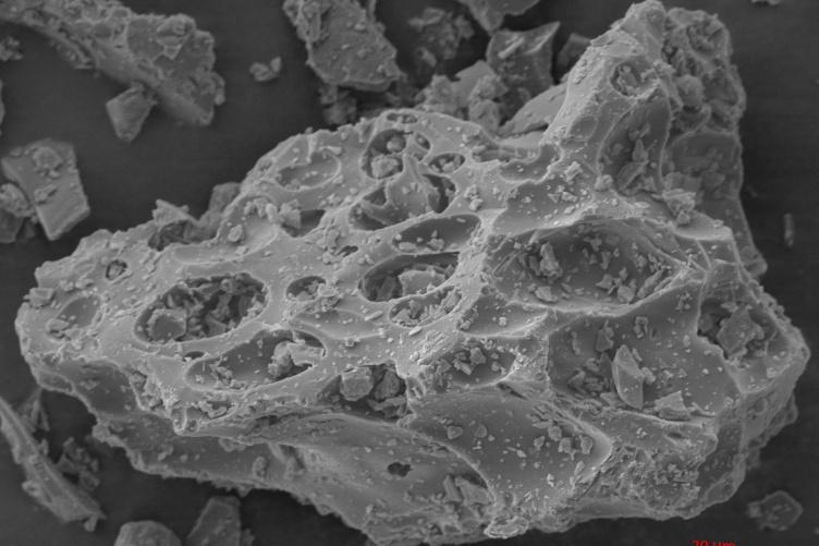 SEM image of volcanic ash