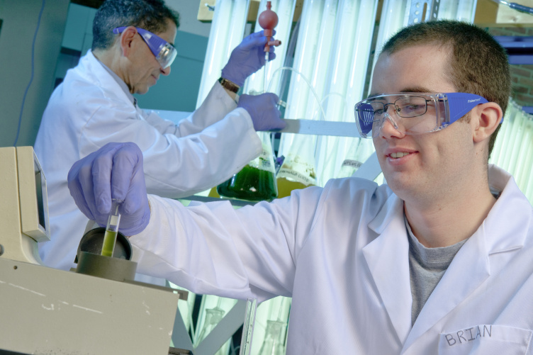 Student examines a test tube