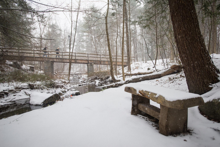 A stream in winter