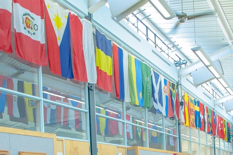 MUB flags
