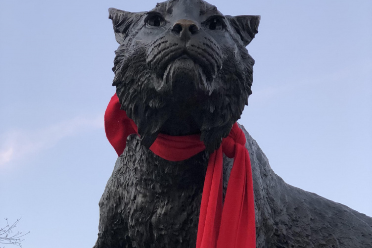 UNH Wildcat Statue in red scarf to commemorate World AIDS Day