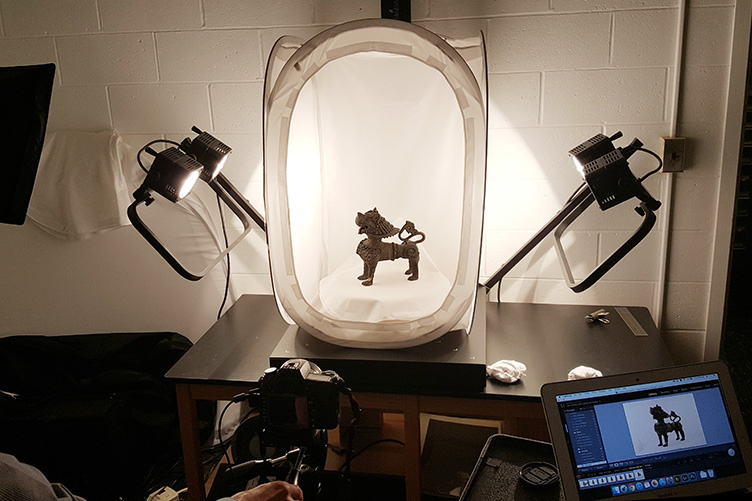 artifact of dog being photographed