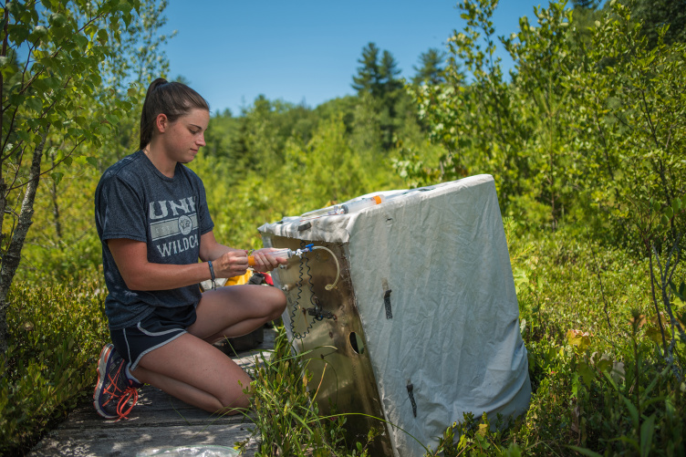 UNH student conducting research at Sallie's Fen, Barrington, NH