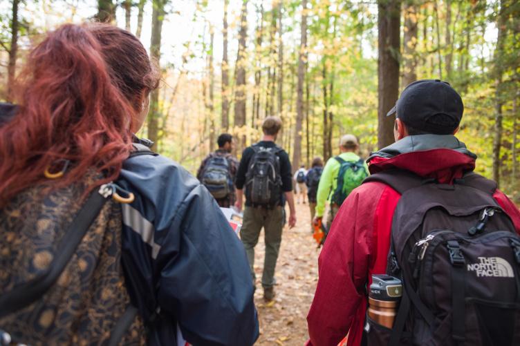people walking through the wilderness