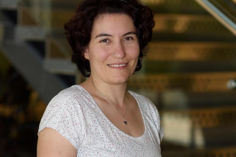 NSF Career Award Laura Dietz