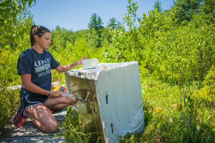 Madeline Juffras '19 working on scientific equipment in a wetland