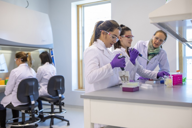 Students conduct research in the biotechnology labs at UNH Manchester