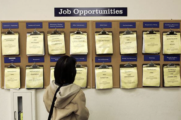 Female looks at a job board.