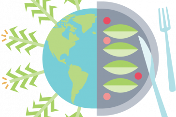 an illustration of corn plants growing out of the earth and a plate of food