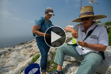 Two UNH researchers at the Shoals Marine Laboratory