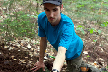 UNH's Ryan Stephens finds a truffle in the Bartlett Experimental Forest.