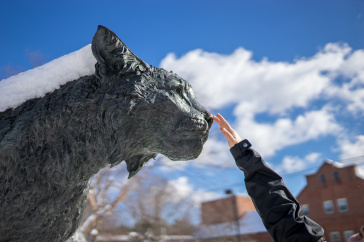 UNH's Wildcat statue with a student's arm reaching up to pat the nose