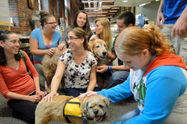 Visits from therapy dogs are one of the stress-reducing activities offered during Frazzle Free Finals at UNH Manchester